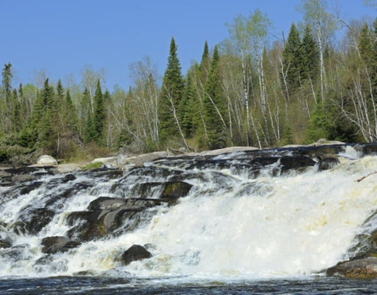 big-falls-trout-river