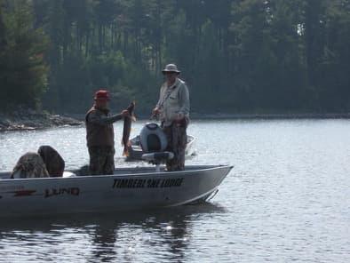 Economy fishing