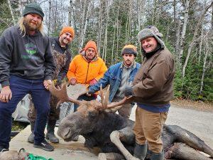moose-hunting-ontario-bull